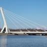 Полтавченко назвал мост в Петербурге именем Кадырова