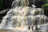 В Гане из-за падения деревьев погибли два десятка туристов