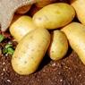 Россиян предупредили о подорожании «второго хлеба»