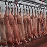 Свинина из Канады и США будет под запретом и после отмены эмбарго