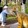 Лягушки выпивают, закусывают и ждут гостей в Швейцарии (ФОТО)