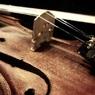 В Лондоне нашли мёртвой 17-летнюю скрипачку из России