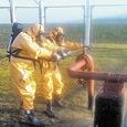 Экологическое бедствие в Воронежской области: кто виноват?
