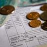Власти решили удвоить штрафы за просрочку оплаты услуг ЖКХ
