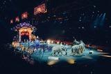 Депутат предложить запретить посещение цирка детьми