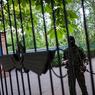 Донецкая республика считает жертвы и борется с мародерством