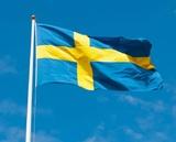 Посольство Швеции отрицает задержание своего дипломата на митингах в Москве