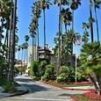В Лос-Анджелесе установили питьевые фонтаны с текилой