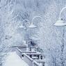 Из-за аномальных холодов школьники в Ижевске пока учиться не будут