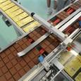 Россию обвиняют в грядущем дефиците шоколада: слишком много едят