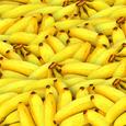 Ученые рассказали, какие продукты вызывают панику и тревогу