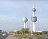 Россиянку Лазареву приговорили в Кувейте к 15 годам тюрьмы