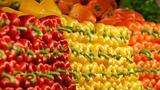 Россельхознадзор  запретит турецкий перец и гранаты