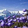 Новая эра начнется с таяния арктических ледников