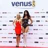 Древнейшая Венера мира обладает выдающейся фигурой (ФОТО)
