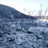 В Хабаровском крае ввели режим ЧС из-за обрушения сопки