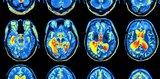 Может ли наука объяснить сознание?