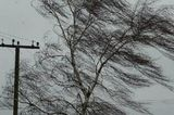 В Москве объявлено штормовое предупреждение