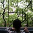 Специалисты из Соединенных Штатов обнаружили новый биомаркер детского аутизма