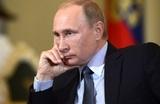 Переводчик рассказал о реакции Путина на его ошибки во время переговоров