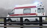 В ДТП на подмосковной дороге погибли три человека
