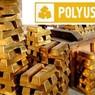 Керимов выкупит все акции Polyus Gold за 5,38 млрд долларов