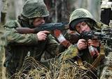 В Госдуме возмущены идеей разместить миротворцев ООН на границе Украины и России