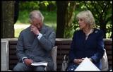 Британский принц Чарльз готовится к поездке к месту отравления Скрипалей