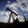 """Президент одобрил перенос приватизации """"Башнефти"""" на более поздний срок  - Тимакова"""