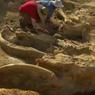 В Греции при строительстве дороги раскопали руины древнего города