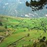 В Госдуму внесен законопроект о бесплатной раздаче земли на Дальнем Востоке
