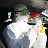 За сутки в России от коронавируса умерли ещё 7 человек, 440 - заразились