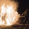 Депутат Госдумы предлагает штрафами бороться с лесными пожарами