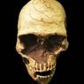 Таинственные пришельцы покорили Европу 14500 лет назад (ФОТО)
