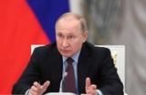 Путин поддержал инициативу введения базы данных для мигрантов в РФ