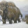 В Якутии появится первое в мире криохранилище мамонтов