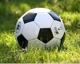 РФС решил возобновить Чемпионат России по футболу