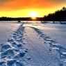 Тулеев раскрыл тайну кузбасского снежного человека