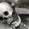 Сотрудники Мосгаза нашли в центре Москвы закатанные в асфальт человеческие кости