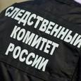 """В деле о хищениях в """"Седьмой студии"""" Серебренникова появились новые фигуранты"""