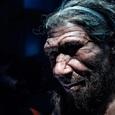 Палеонтологи выяснили, что привело неандертальцев к каннибализму