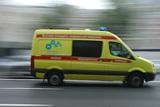 При столкновении микроавтобуса с фурой под Псковом погибли восемь украинцев