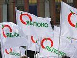 «Яблочники» хотят провести акцию за отставку Кадырова