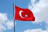 Послов России и Ирана вызвали в МИД Турции из-за ситуации в сирийском Идлибе