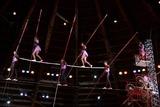 Стала известна причина падения артиста из-под купола цирка Запашного