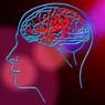 Учёные обнаружили область мозга, связанную с «духовными переживаниями»