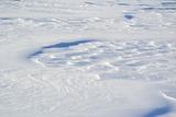 В Саратове уволили чиновницу после скандала с уборкой снега учителями