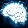 Медики назвали лучшие микроэлементы для здоровья мозга