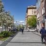По расписанию: москвичам могут разрешить гулять три раза в неделю