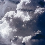 МЧС предупреждает об урагане в Подмосковье